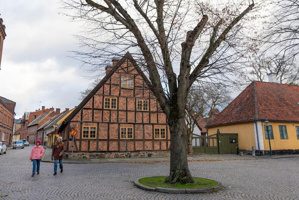 Kulturen i Lund är ett friluftsmuseum som sträcker sig över två kvarter. Vid entrén kan man slå sig ner för en bit lunch på Kulturens fina restaurang.