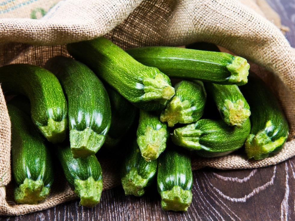 Squashen går att odla i kruka. Sommarsquashen 'Sunburst' är snabb, så senast juli för skörd innan vintern.
