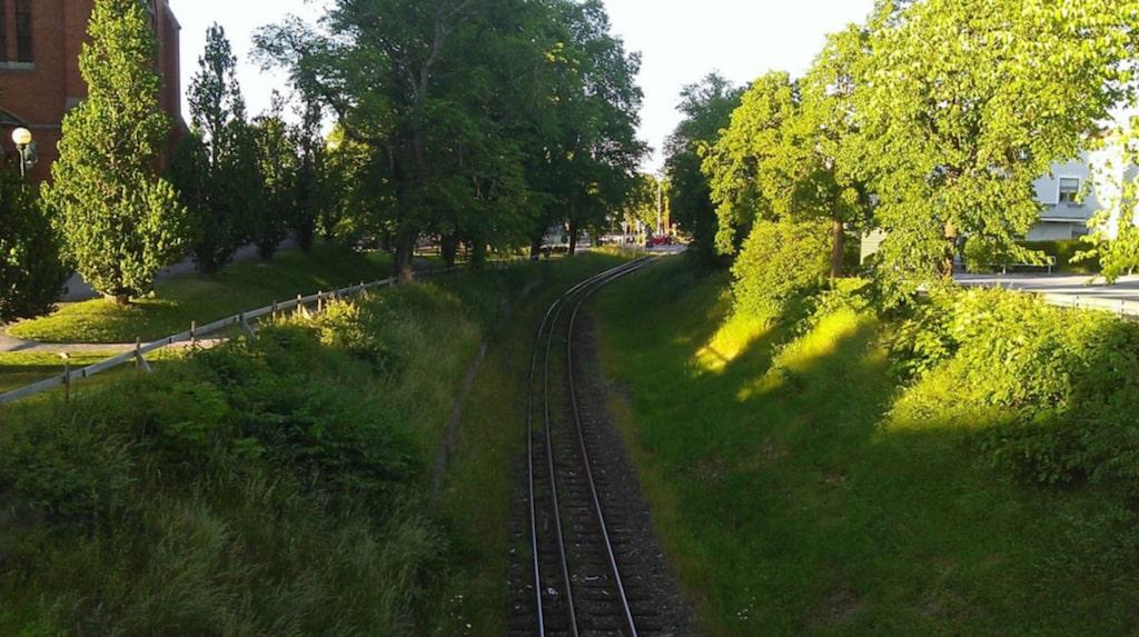 Så här fin är sträckan från Linköping precis innan tåget stannar i Västervik.