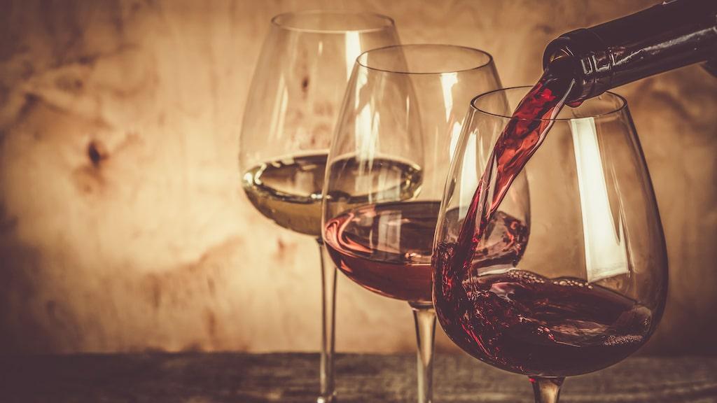 Allt fler kändisar bestämmer sig för att göra vin.