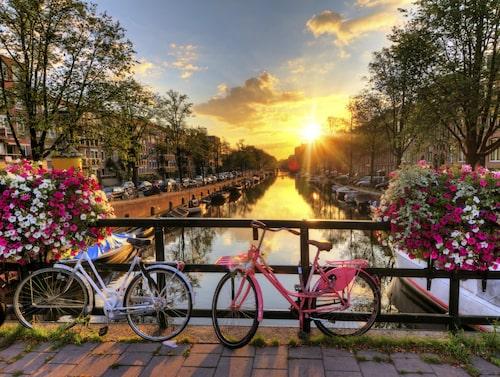 Ta en lugn fika på ett kafé vid en stilla kanal i Amsterdam.