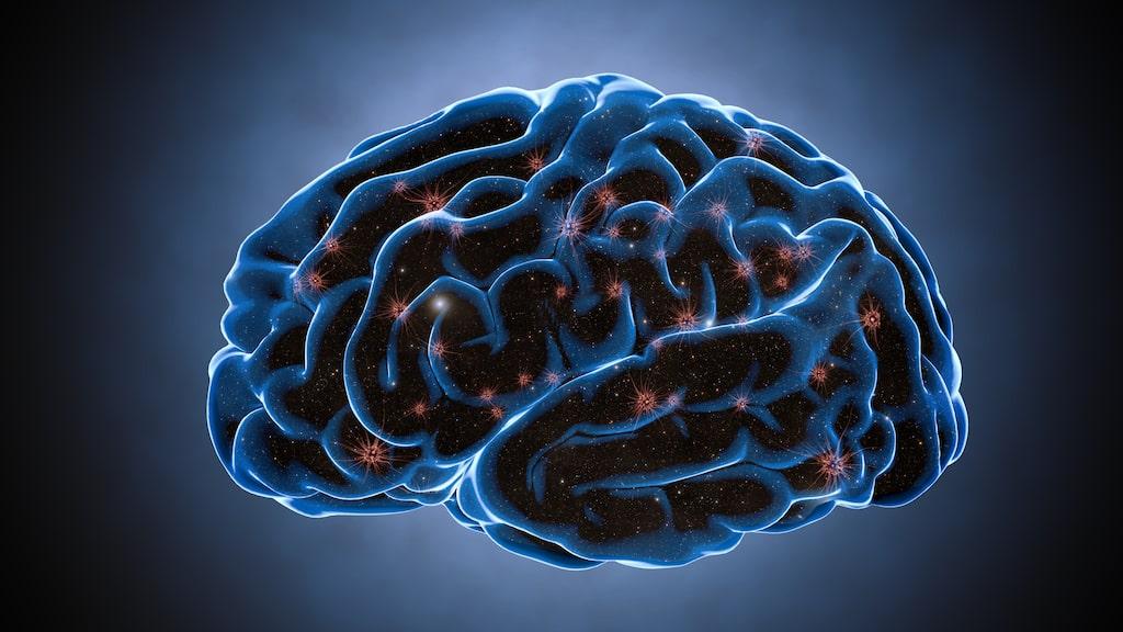 Man har kunnat se att många vänsterhänta har en större hjärnbalk, vilket gör att de kan processa information snabbare.