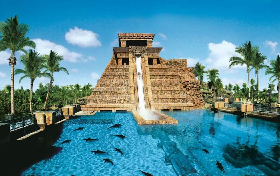 Leap of Faith. Åkupplevelsen inleds med ett cirka tjugo meter närmast vertikalt fall från en kopia av ett Mayatempel innan du far via ett rör genom en bassäng fylld av hajar.