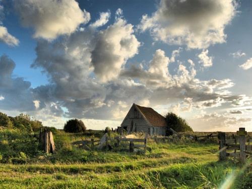 Ön Texel utan för Nederländerna.
