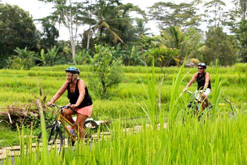 Cykeltur bland risfälten på Bali.