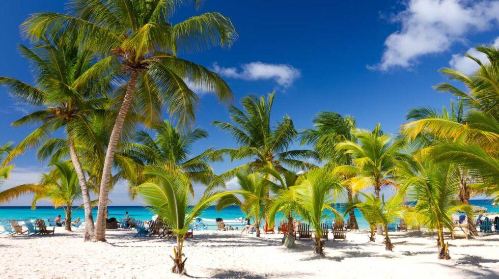 dominikanska republiken.   publicerad text:  publicerad bildtext:dominikanska republiken har länge lockat med kritvita stränder och sol.