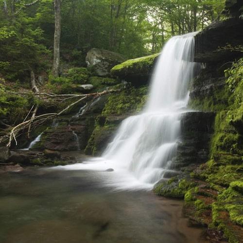 Natursköna upplevelser i New York State