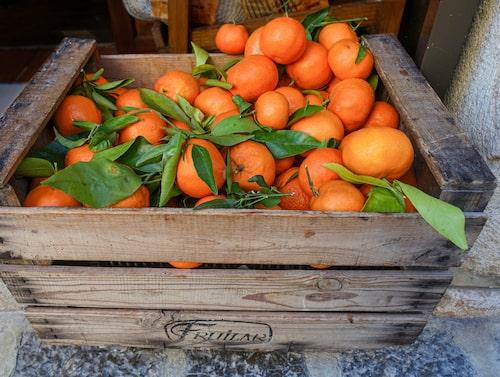 Passa på att frossa i apelsiner på Mallorca.