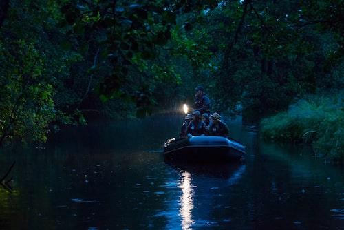 Längs åar och smala vattendrag glider vi ljudlöst fram i skymningen blå timme, medan regnet strilar mellan lövverket. Bäversafari handlar lika mycket om tålamod och spänningen, som att faktiskt få syn på bäver.