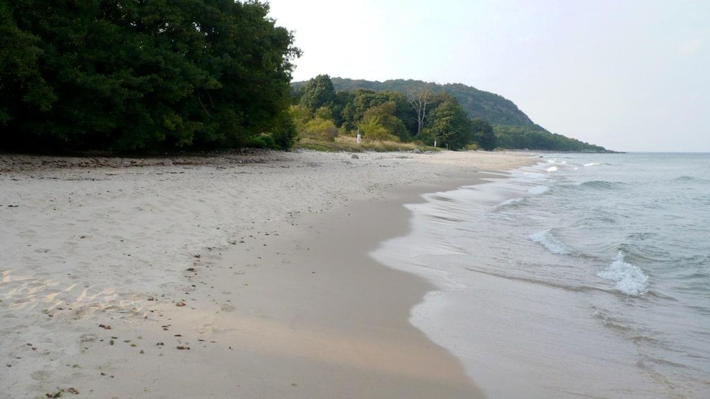 Strax söder om Kivik på Österlen ligger den här vita och finkorniga stranden i Stenshuvuds nationalpark.