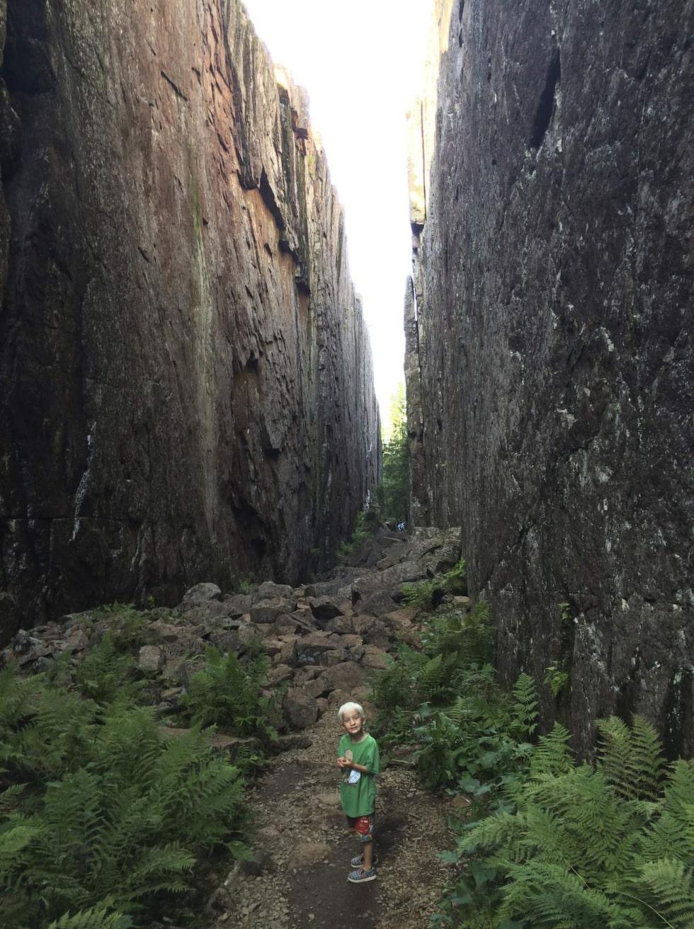 <p>Skuleskogens Nationalpark.  Vandra i flera dagar, bo i naturen och låt dig omslutas av den vilda storskogen.</p>