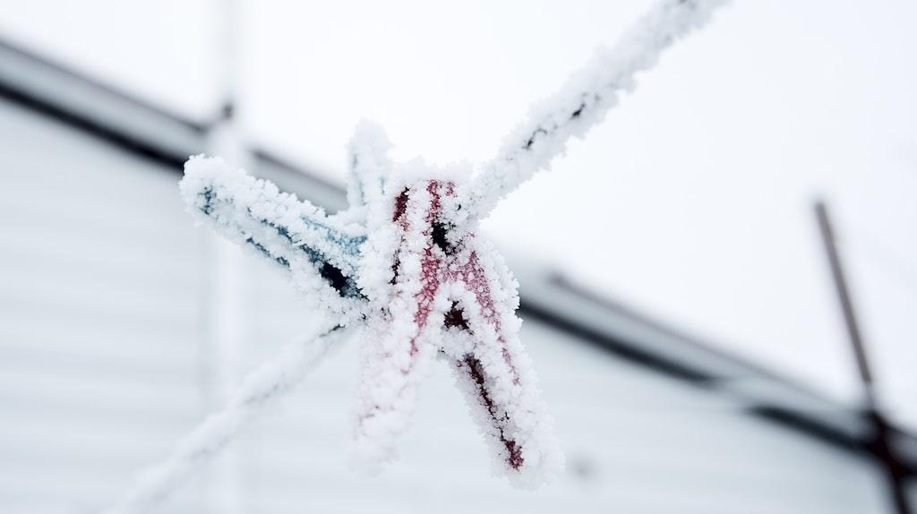 Snön kan göra mycket gott för bland annat mattor.