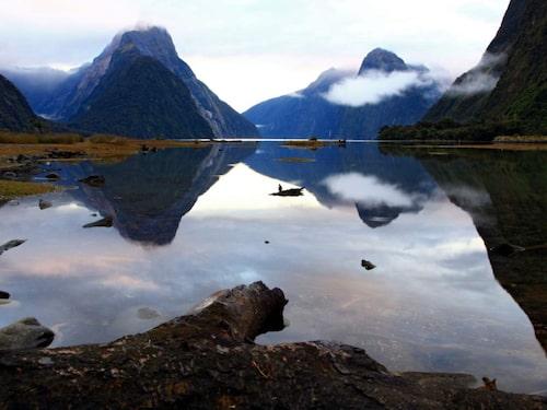 Fiordland nationalpark, Nya Zeeland.