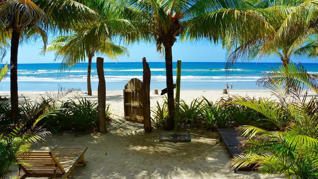 Drömgrinden mot havet och stranden Santa Teresa på Nicoya-halvöns södra spets.