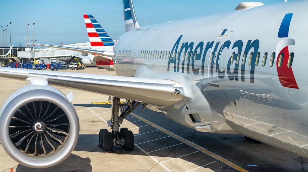 Amerikanska flygbolag kan inte neka servicedjur på kommersiella flygningar.