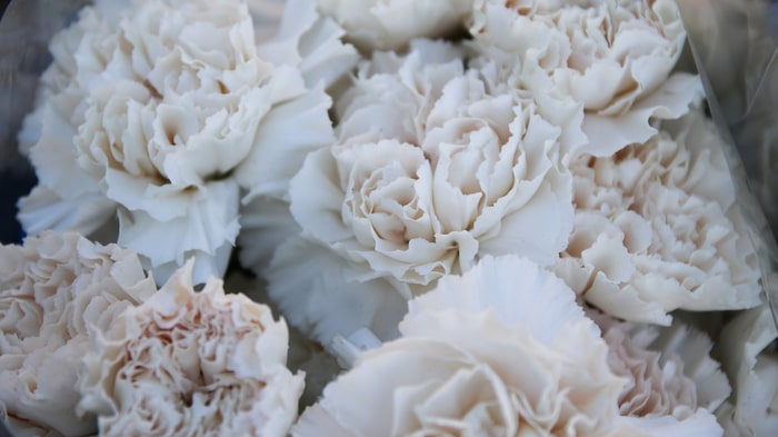 På det första mors dag-firandet dekorerade man med vita nejlikor.
