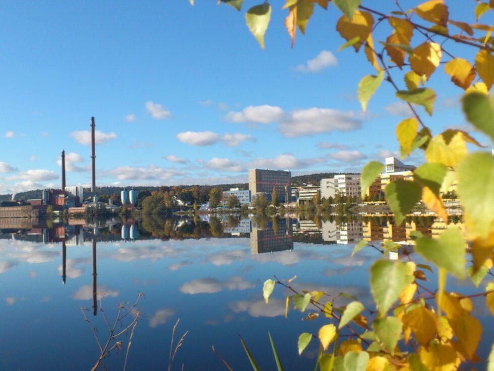 I dag har Jönköping mycket mer än pizza och kebab att erbjuda.