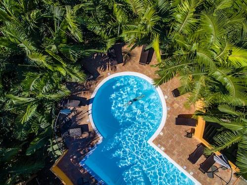 Slappa gärna vid den snygga och palmbladsskuggade poolen.