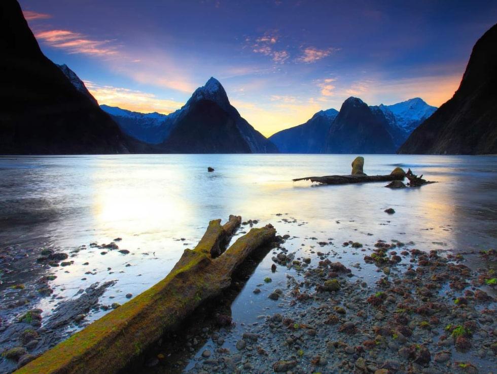Milfordsundet på Nya Zeelands sydö bjuder på spännande närkontakt med naturen.