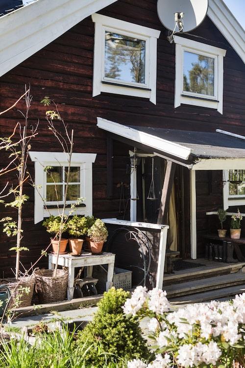 Vid husets entré står några krukor med gröna växter. Vitt bord, loppisfynd. Terrakottakrukor och pilkorgar, Zetas Trädgård.