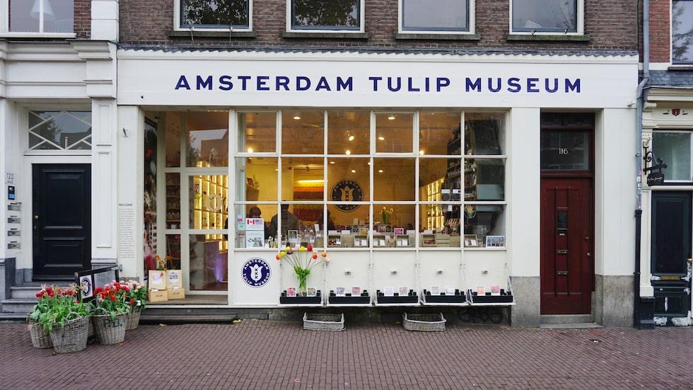 Tulpanmuseum på Prinsengracht 112.