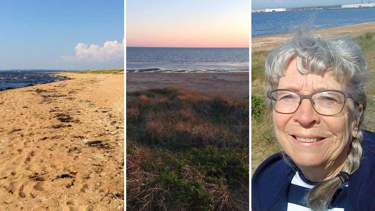 """Bråket om lugna stranden – Eva, 71: """"Känns oseriöst"""""""