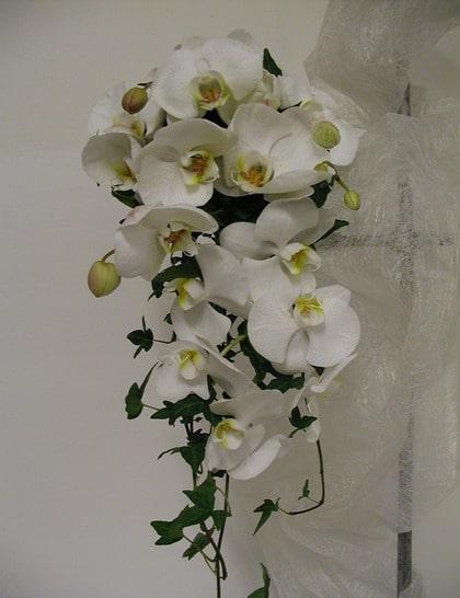 ENKEL OCH LJUV. Droppformad bukett av vita orkidéer och murgröna som ger ett fräscht och krispigt intryckt.
