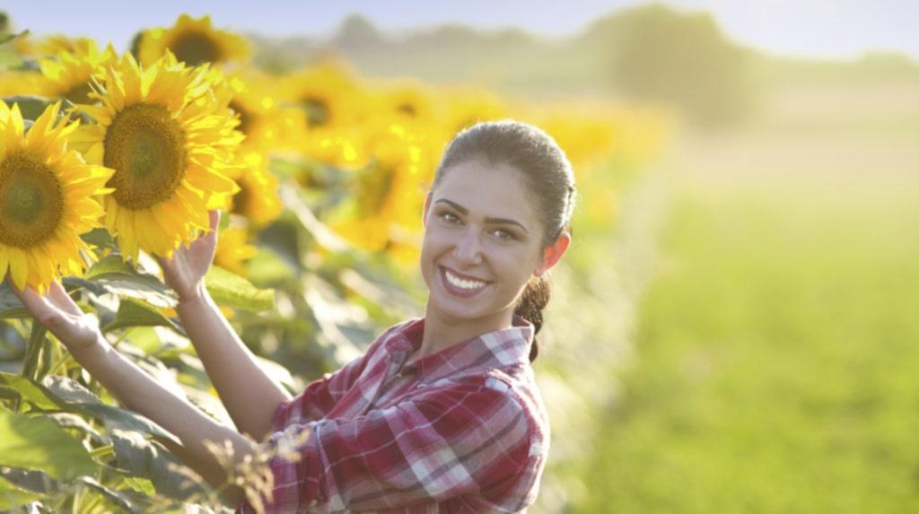 Odla egna solrosor är enklare än du tror.