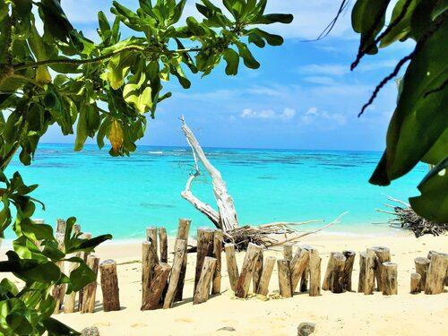 Privata ön Denis Island är paret Masons livsprojekt. Det mesta av det som äts och används är tillverkat på ön.
