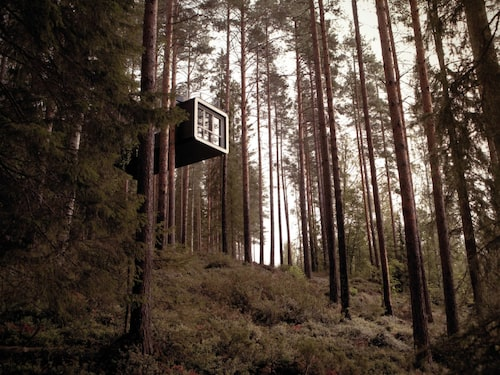 The Treehotel.