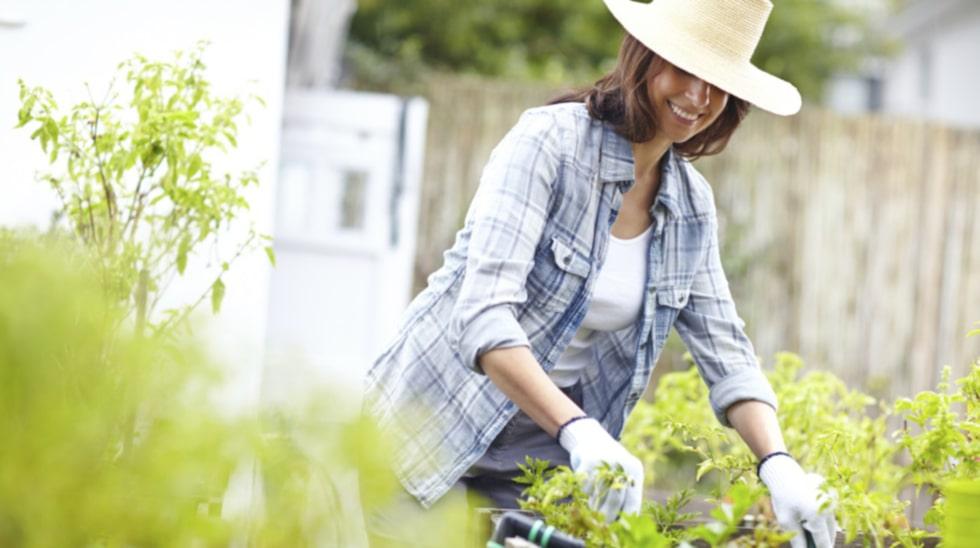 Lite trädgårdsarbete kan göra underverk för din hälsa.