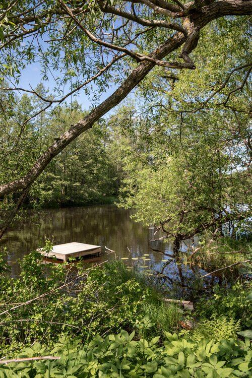 Idylliska ån Hedströmmen är familjens granne. Barnen hoppar gärna från bryggan när de badar.