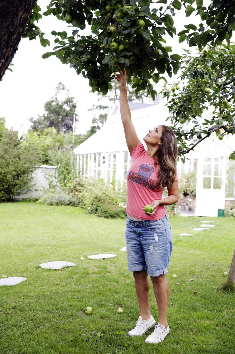 När Söndag är på besök hemma hos Leila blir det äppelpaj av frukt från trädgården.