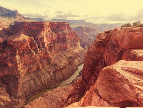 Över fem miljoner turister besöker Grand Canyon varje år.