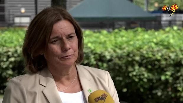 Isabella Lövin avgår som språkrör för Miljöpartiet