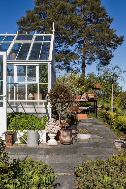 Det är inte svårt att förstå att Maria arbetar på Zetas Trädgård eftersom stilen genomsyrar hemmet med vackra krukor och härliga växter.