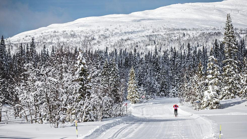 Edsåsdalen är känt för sina längdskidåkningsspår.