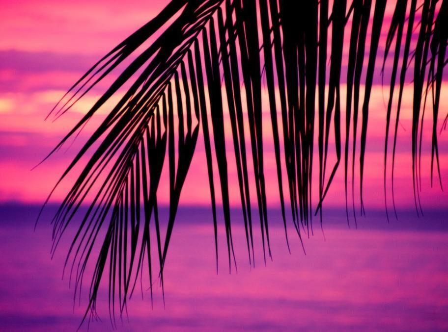 Ingenting går upp mot solnedgångarna över Indiska oceanen!