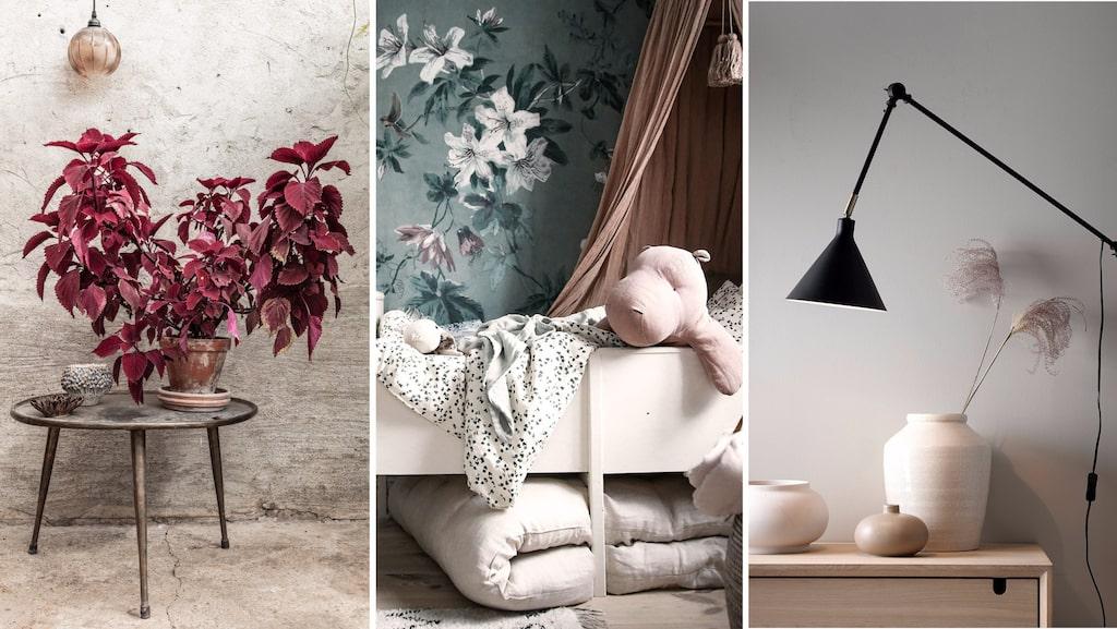 Palettblad, romantiska, lite dystra barnrum och svarta vägglampor på greige väggar. Sååå snyggt – men också så uttjatat...
