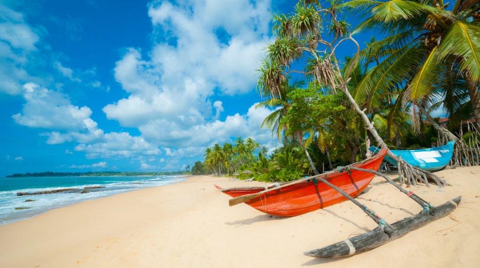 De karakteristiska smala fiskebåtarna på Sri Lanka är en vanlig syn längs alla stränder.
