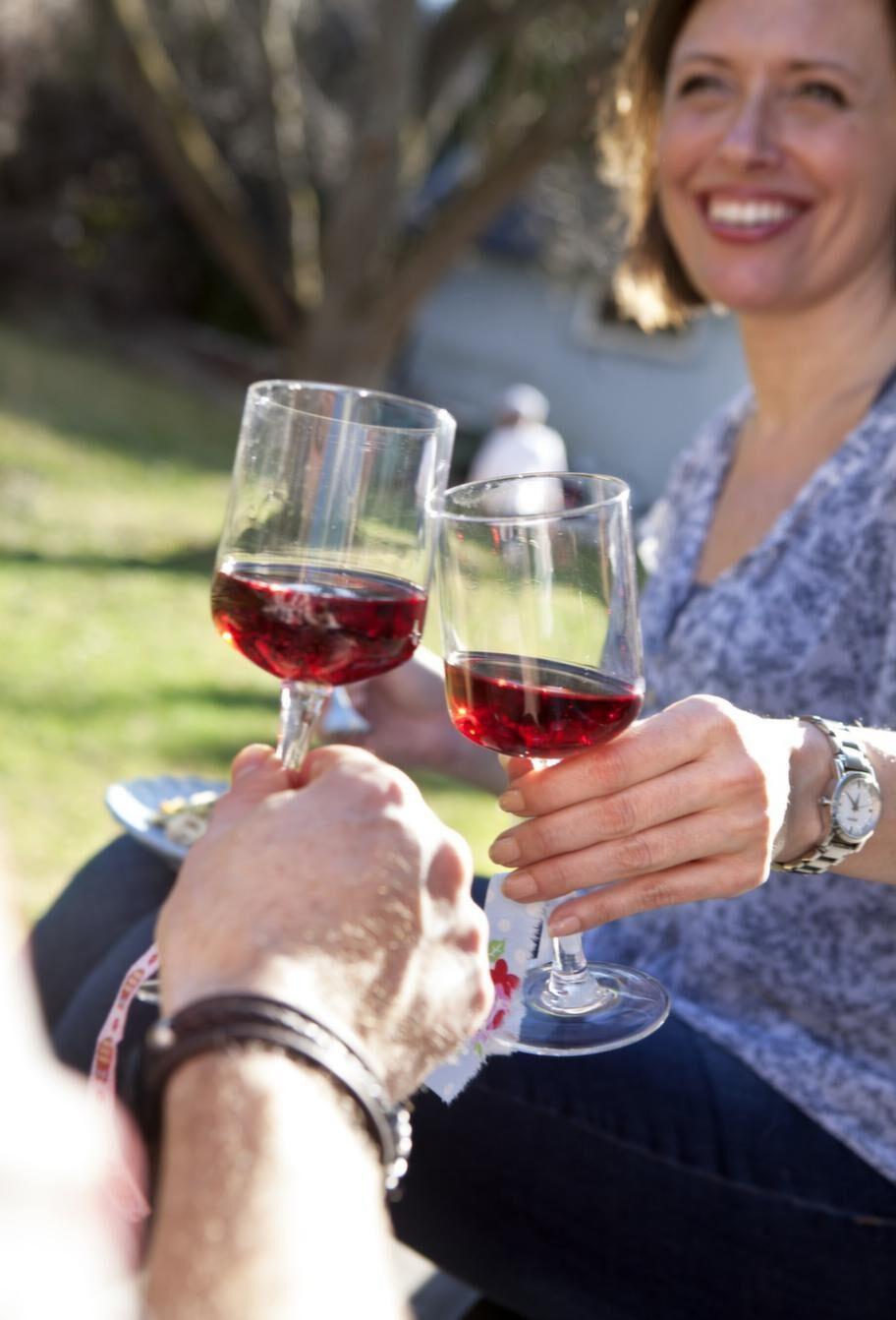 OLIKA SMAKER. Köp en flaska av varje och testa! Samtliga viner passar utmärkt till en köttbit från grillen med smakrika tillbehör.
