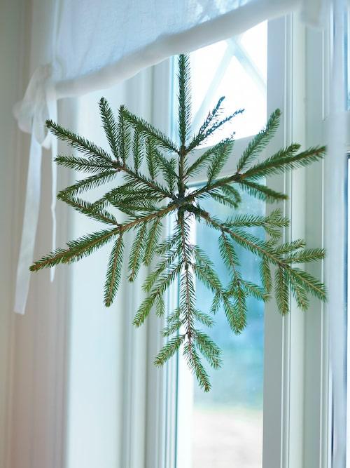 Tvina ihop grankvistar till en stjärna och häng upp i fönstret.