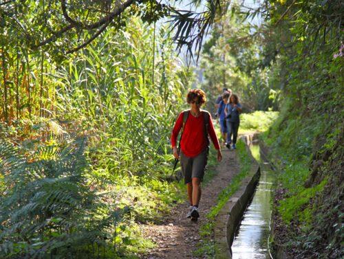 Ta en vandringssemester på Madeira.