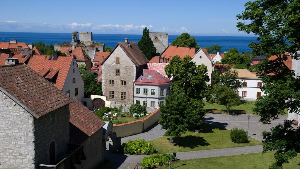 Lonley Planet har utnämnt Gotland till ett av årets hetaste resmål.