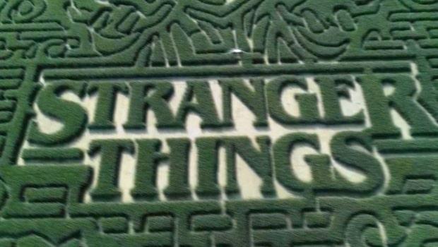 Se gigantiska labyrinten med motiv från Stranger Things