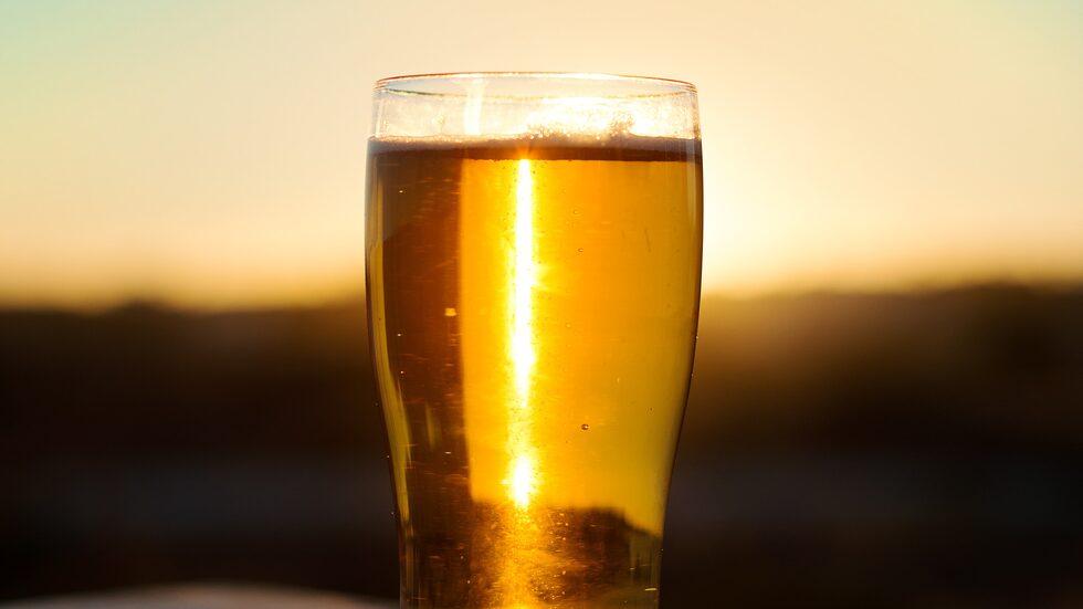 Ölexperterna har valt ut 15 goda sommaröl.