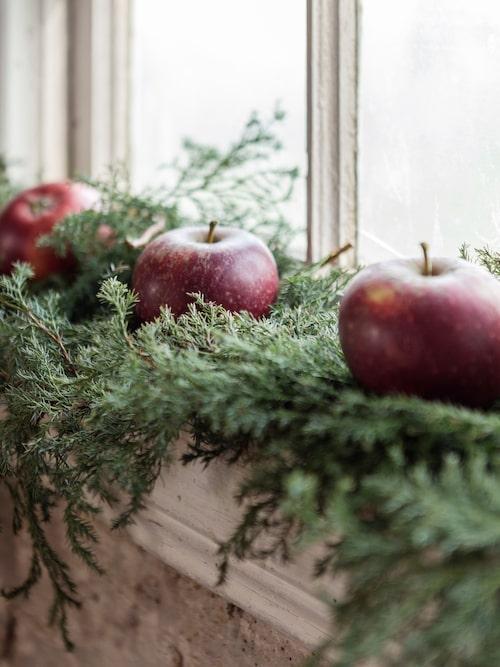 Dekorera med äpplen och mjuken som inte barrar och håller sig fin inne i flera veckor.