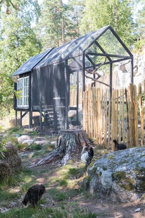 Hönshuset är byggt på fri hand med lösvirke och fönstren är ett fynd från Blocket.