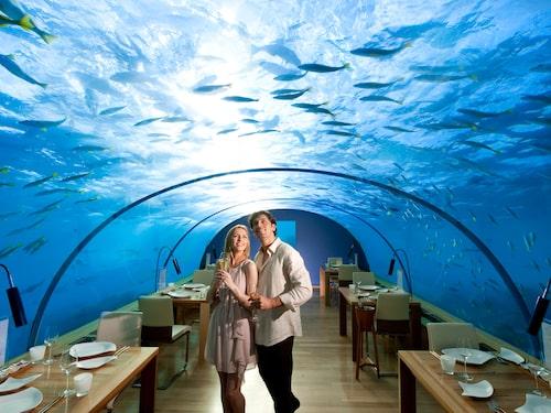 Alla de femtio villorna har egen infinity pool samt glasgolv i vardagsrummet så du kan se oceanen under.