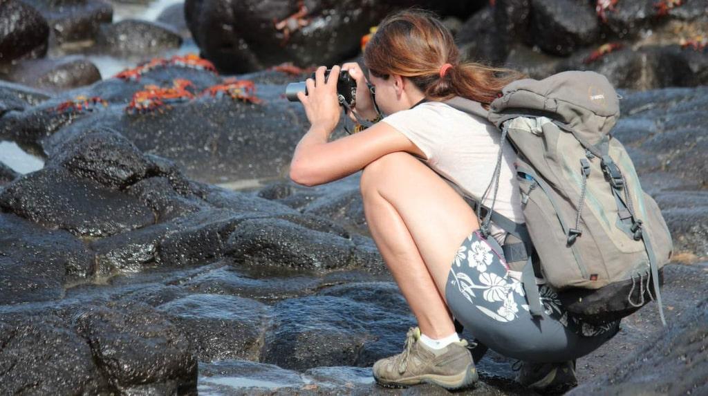 Ta med dig kamera. Du vill inte missa möjligheten att föreviga det spektakulära djurlivet.
